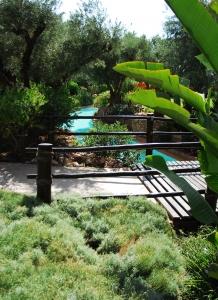 Les jardins de Oasiria